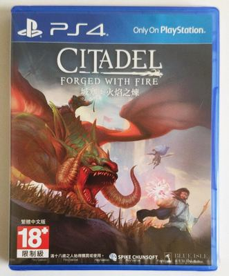 PS4遊戲 城塞 火焰之煉 Citadel: Forged with Fire 中英文