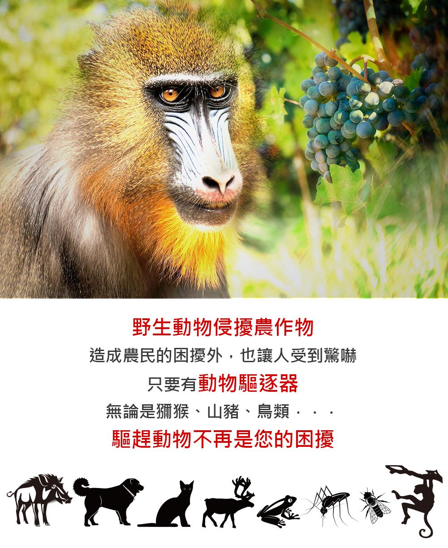 野生動物侵擾農作物網頁示意圖