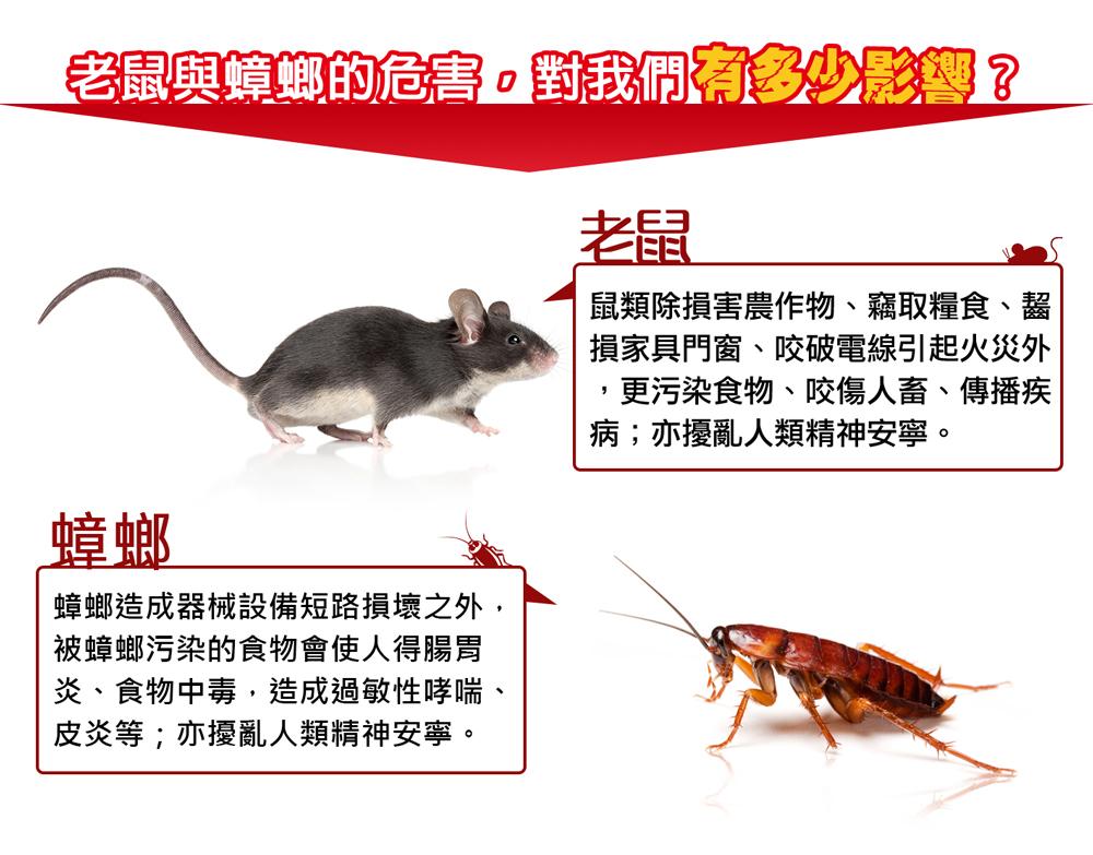威力叔叔 滅蟑滅鼠123超強組合包網頁圖