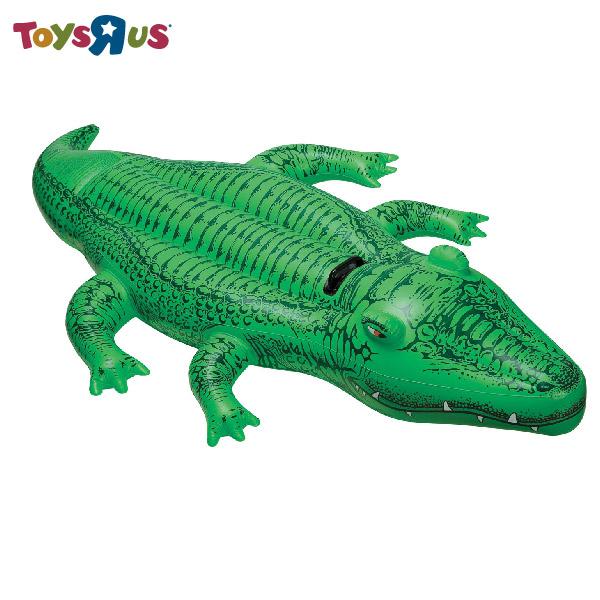 玩具反斗城 【INTEX】可愛鱷魚騎乘 充氣水上用品