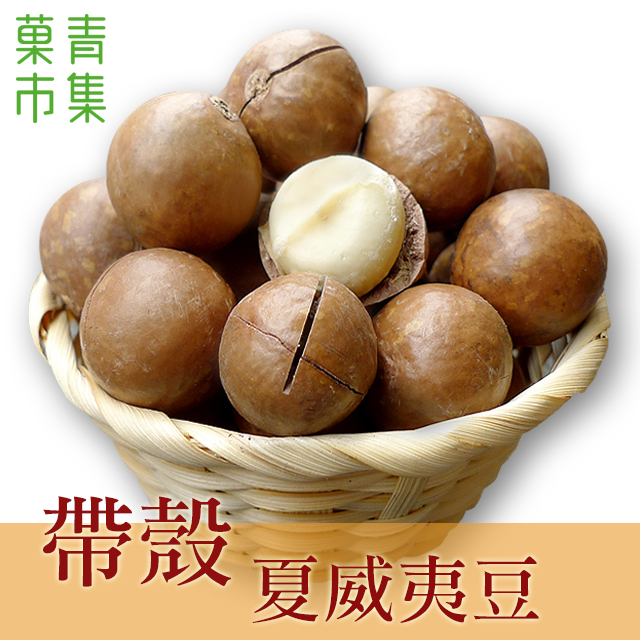 帶殼夏威夷果(夏威夷豆)(火山豆) 600G大包裝 附剝殼器【?青市集】