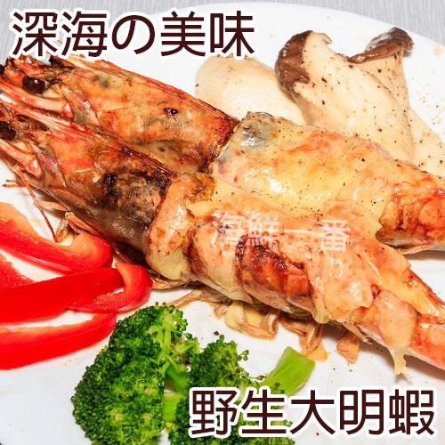 一番嚴選!野生大明蝦 (淨重450g±10%/8尾/盒)