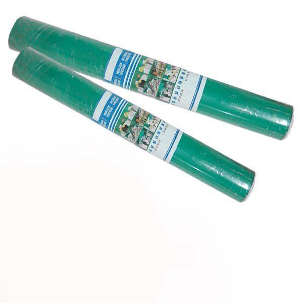 南亞桌墊組(透明綠+綠色發泡) 45*60cm