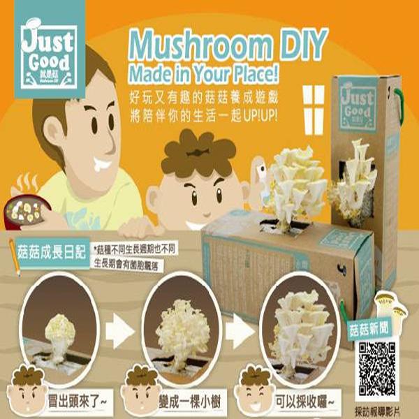 【姍伶】Just good就是菇 DIY可食用 辦公室種香菇太空包養菇盒 (鮑魚菇/黃金菇/黑木耳/珍珠菇【超商付款/店取】