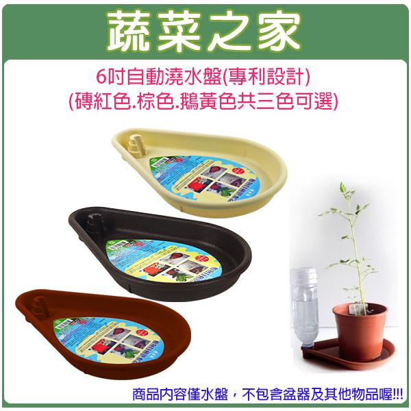 【蔬菜之家005-E01】6吋自動澆水盤(專利設計)(磚紅色.棕色.鵝黃色.三色可選)