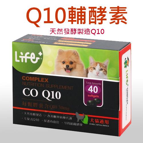 【虎揚科技】輔酵素Q10/保護心臟.牙周健康-超低價出清免運