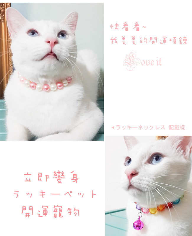 【A1寶石】日本寵物平安開運項鍊-幫助主人招財 開運 -小型貓狗犬適用(款式1)