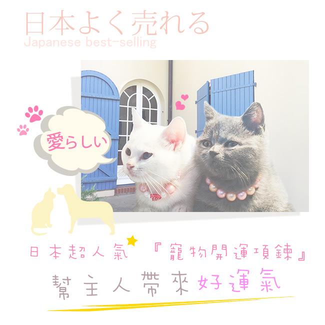 開運招財首選(含開光)