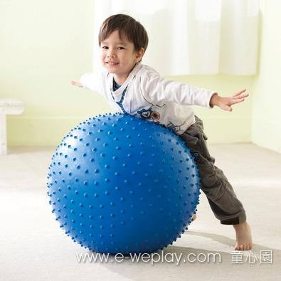 【Weplay 身體潛能館】球上樂趣 - 彈力觸覺球 (直徑75cm) 6800KB0306