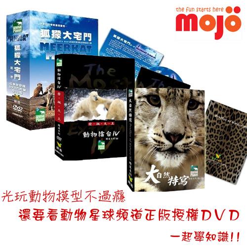 mojo_dvd.jpg