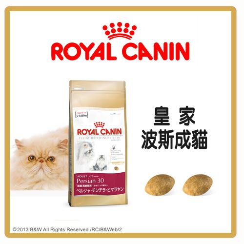 【力奇】Royal Canin 法國皇家 波斯成貓 P30 2kg-540元>可超取(A012L01)
