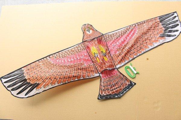 特大老鷹風箏 造型風箏 立體老鷹風箏(特大立體布面碳纖維架162cm X 78cm)/一隻入{定180}~3608A~