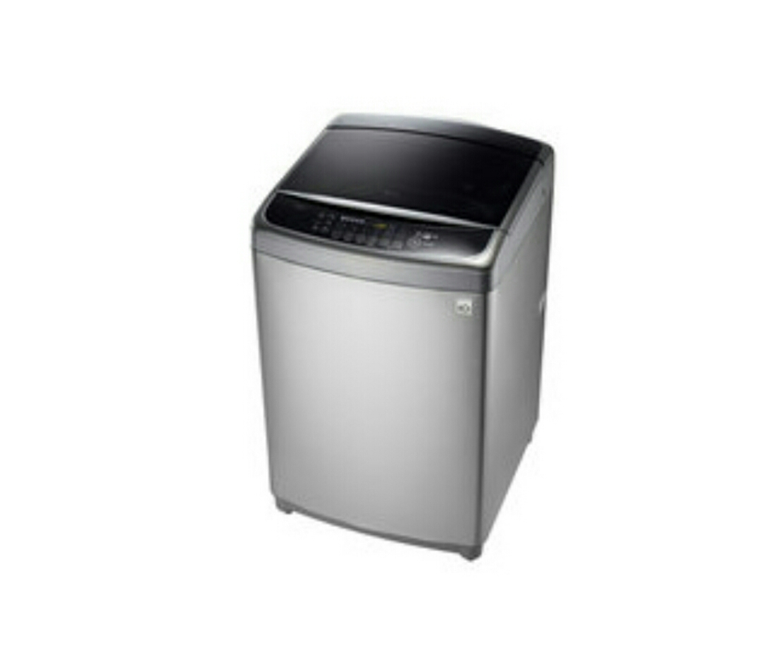 LG 蒸善美系列 19公斤 直驅變頻洗衣機 WT-SD196HVG