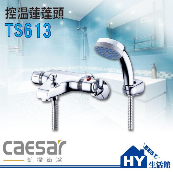 凱撒衛浴 Caesar TS613 控溫蓮蓬頭 沐浴龍頭 台灣製造