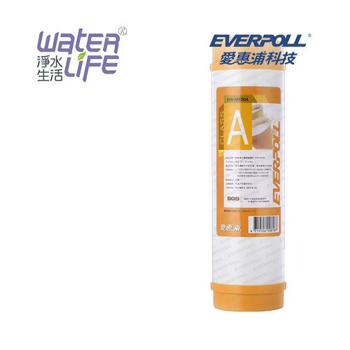 【淨水生活】《EVERPOLL 愛惠浦科技》道爾樹脂濾心 EVB-M100A