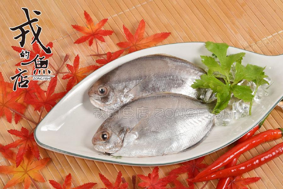 【現撈肉鯽魚 -600g/包】台灣海域捕撈,新鮮直送,肉多刺少,野生最鮮甜*戎的魚店*