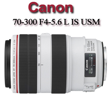 Canon 70-300 F4-5. 6L IS USM【平行輸入】★遠攝變焦L鏡
