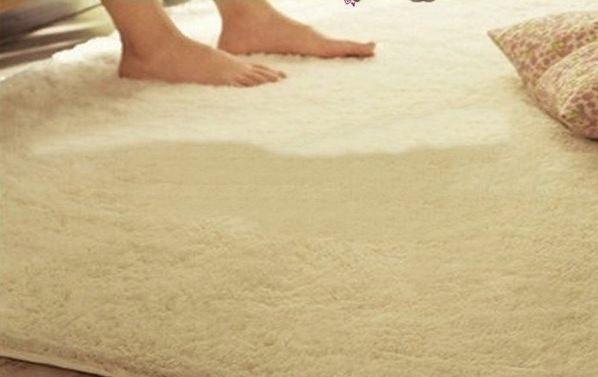 促銷特賣 經濟實用 抗漲促銷 80*160 CM 舒柔絲毛防滑柔軟地墊/ 地毯