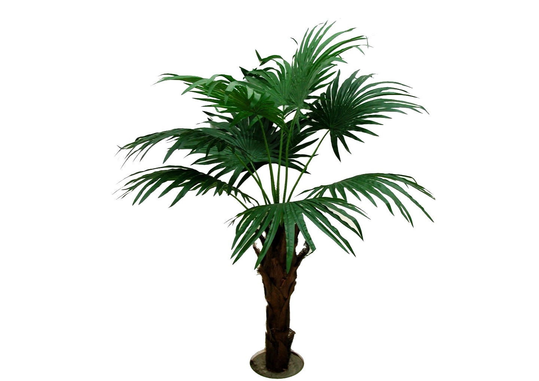 ★超低價★4尺蒲葵 / 塑膠樹幹人造樹 空間 景觀 佈置 造景
