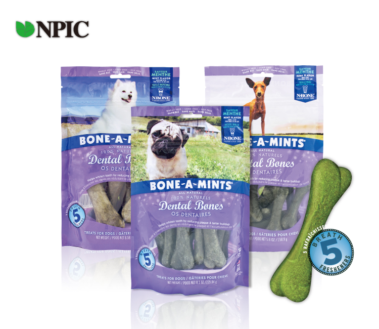 美國NPIC Bone-A-MintsR幫潔明-薄荷清香潔牙骨 (牛奶口味)