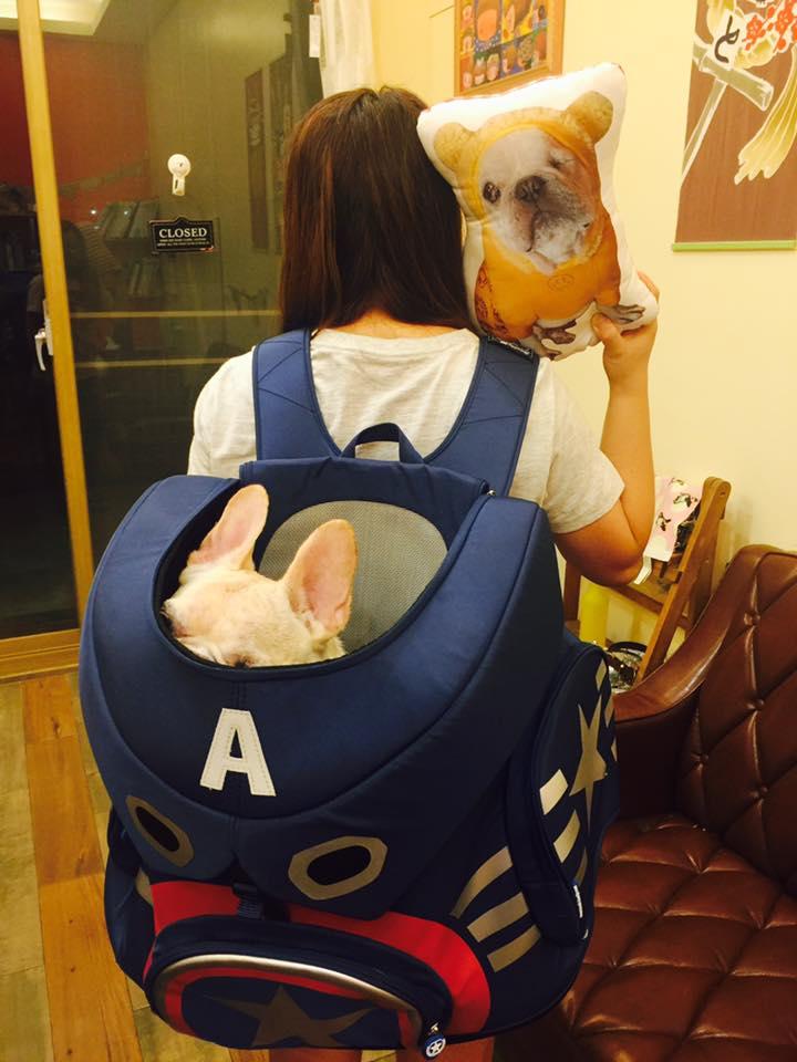 Daisuki】叢林派對系列後背包大型寵物袋 寵物外出包 附拉桿 前背 後背 硬底透氣 可手提