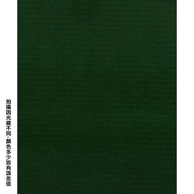 【文具通】全開粉彩紙17 深綠 P1330019