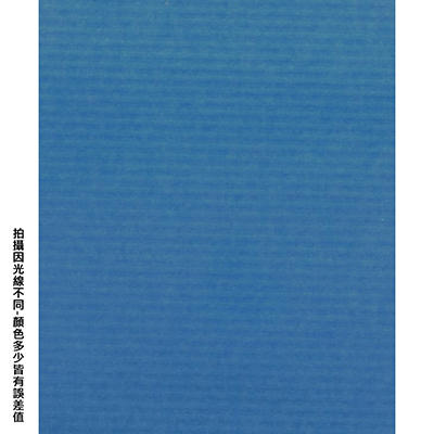 【文具通】全開粉彩紙18 中藍 P1330020