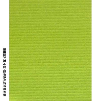 【文具通】全開粉彩紙27 果綠 P1330029