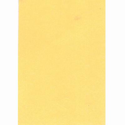 【文具通】全開書面紙肉色 購買前請注意,紙製品不接受退換貨! P1400032