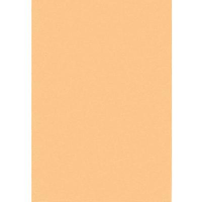 【文具通】全開書面紙淺柑色 購買前請注意,紙製品不接受退換貨! P1400037