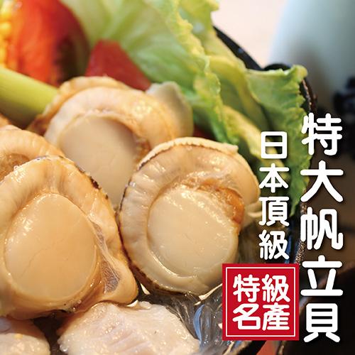 ☆日本頂級特大帆立貝10顆☆ 超大尺寸/北海道原裝進口/扇貝/干貝/銅板價【陸霸王】