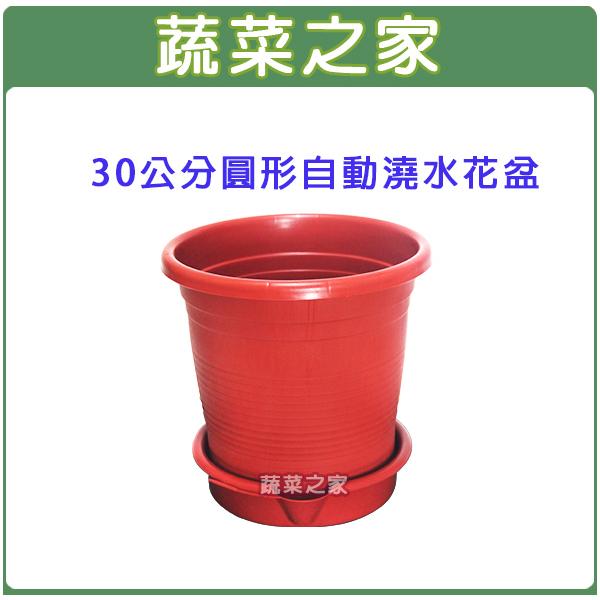 【蔬菜之家005-AP30】30公分圓形自動澆水花盆(含底盤)