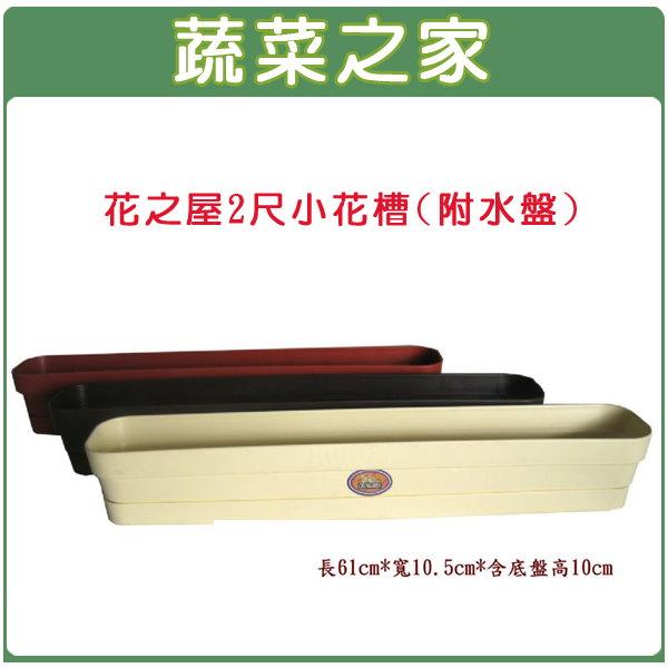 【蔬菜之家005-D31】花之屋2尺小花槽(附水盤) 鵝黃色、磚紅色、棕色