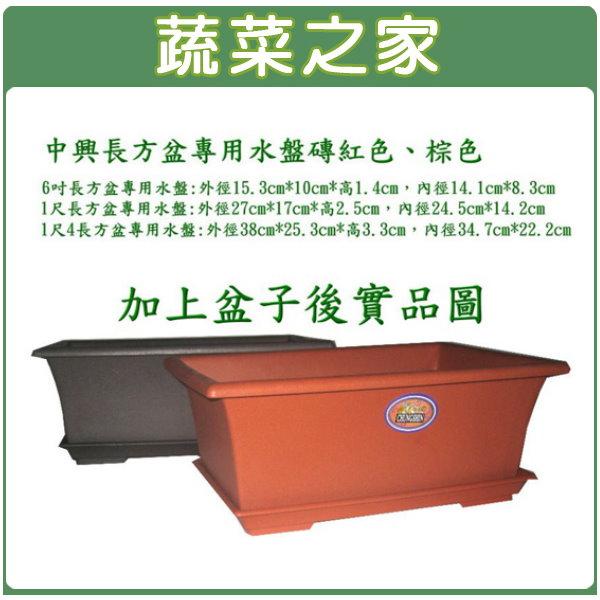 【蔬菜之家015-F92】中興1尺長方盆專用水盤磚紅色、棕色