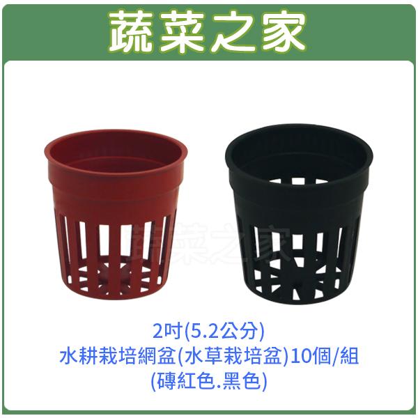 【蔬菜之家005-C90-1】2吋(5.2公分)水耕栽培網盆(水草栽培盆)10個/組