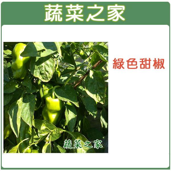 【蔬菜之家】G01.綠色甜椒種子6顆(銘星.荷蘭進口)