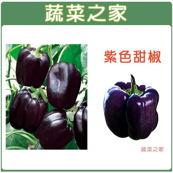 【蔬菜之家】G17紫色甜椒3顆