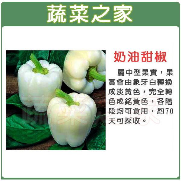 【蔬菜之家】G75奶油甜椒3顆