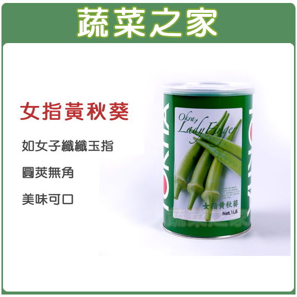 【蔬菜之家】大包裝G79.女指黃秋葵種子(日本進口)500顆