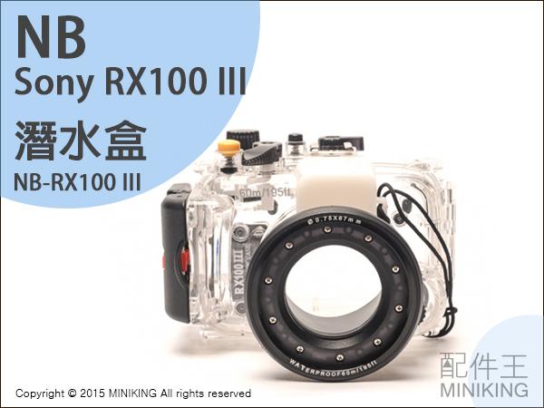 【配件王】現貨 NB公司貨  Sony RX-100 III RX100 一代二代三代 潛水盒 相機防水 潛水殼罩 浮潛 防水殼 墾丁