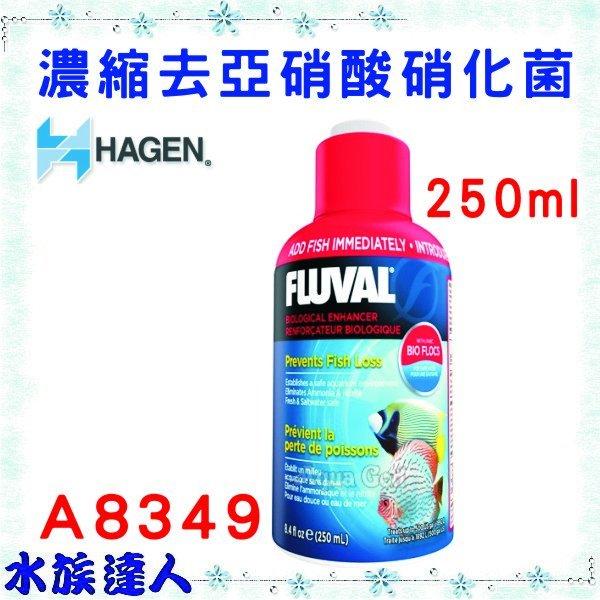 【水族達人】HAGEN 赫根 FLUVAL富濾霸 《濃縮去亞硝酸硝化菌 250ml A8349》 全新上市