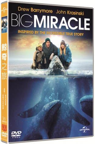 鯨奇之旅 DVD Big Miracle 克絲汀貝爾茱兒芭莉摩約翰卡拉辛斯基德莫麥隆尼泰德丹森 (音樂影片購)