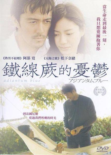 鐵線蕨的憂鬱 平裝版 DVD 不能結婚的男人東大特訓班阿部寬 太陽之歌松下奈緒(音樂影片購)