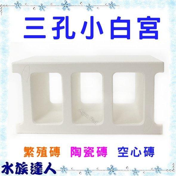 【水族達人】《三孔小白宮 異型磚 陶瓷磚 三孔磚 空心磚 躲藏 過濾 裝飾 造景 U-EW-001)》(單入)