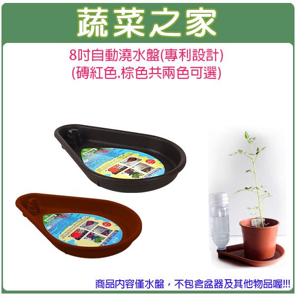 【蔬菜之家005-E04】8吋自動澆水盤(專利設計)(磚紅色.棕色兩色可選)