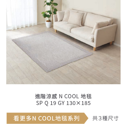 進階涼感 N COOL 地毯 SP Q 19 GY 130×185