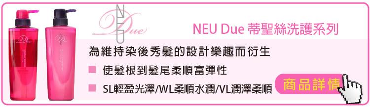 哥德式 NEU蒂聖絲洗護系列 WL VL SL蒂聖絲護髮素 洗髮精 染髮後適用 / 輕盈 光澤 / 柔順 水潤 / 潤澤 柔軟