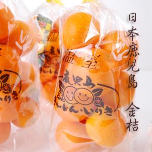 【喜果】日本鹿兒島溫室金桔(6袋入)禮盒