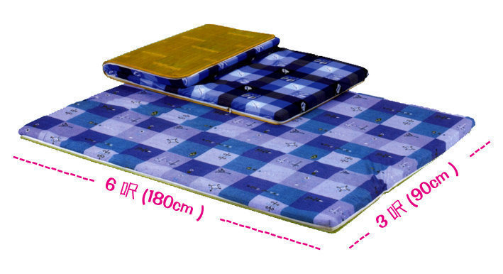 軟式【3x6單人】台灣製-椰子床墊/雙人學生單人床墊/高密度棉床墊/雙面冬夏兩用(品質優良) 租屋首選
