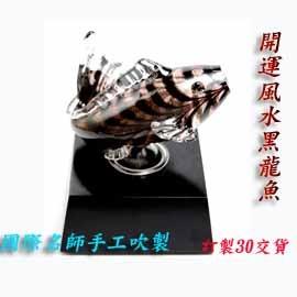 開運風水龍魚玻璃藝術精品精油薰香器擴香儀 ~超凡工藝~安井顯太作品(全球獨賣)